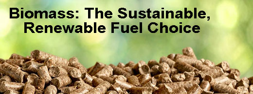 Biomass: The Sustainable, Renewable Fuel Choice | Mr.Fireplace